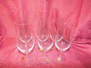 NACHTMANN 6 Stk. Serie Opus Biertulpe, Bier - Gläser, Kristallglas / Gläser Neu - Zeuthen