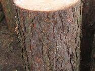 sehr breiter Kiefer-Hackklotz zum selber Brennholz hacken - Bad Belzig Zentrum