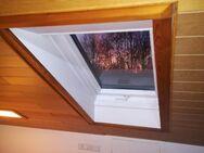 Dachfensterrollladen Dachfenster Außenrollo Rollladen Rollos Alu Renovierungsdachfenster Deutsche Dachfenster ab Werk nach Maß - Reutlingen