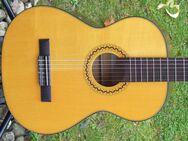 Verkaufe schöne ¾ Konzertgitarre klassische Nylonsaiten Gitarre im Vogelsberg - Schotten