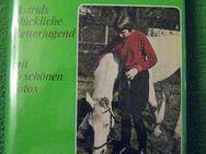 """""""Mein Herz gehört den Pferden"""" von Michael Molander in gutem Zustand, mit 16 schönen Fotos, Erich Hoffmann Verlag, 200 Seiten, stammt aus 1970, ASIN: B0000BLQHW, zum Schutz für weiteren Gebrauch schon eingebunden, 4,- € - Unterleinleiter"""