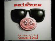 Die Prinzen - Du musst ein Schwein sein 1995 - Nürnberg