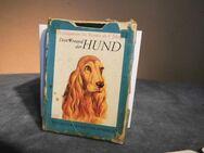 DDR Lehrquartett Dein Freund der Hund / ab 8 Jahre, Pössneck Verlag 1976 - Zeuthen