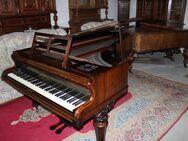Broadwood & Sons Konzertflügel / Stutzflügel / Salonflügel / Pianoforte / Piano - Zeuthen