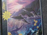Star Line 500 Ravensburger Puzzle Abendidylle Delfine (Orcas) - Krefeld