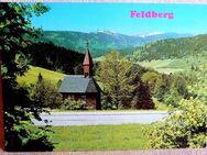 Farbige, alte Ansichtskarte Feldberg - Niederfischbach