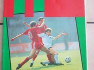 11 Zeitschrift für internationale Fußball-Geschichte - Kassel