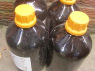 Flaschen > 4 Stück - Emsdetten Zentrum