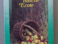 John Steinbeck: Stürmische Ernte (1977) - Münster