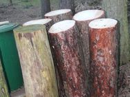 verschieden breite Hackklötze um selber Brennholz zu hacken - Bad Belzig Zentrum