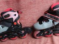 XQ Max Inline Skater Größe 28 bis 32, Rollerblades - Bad Belzig