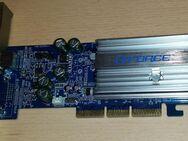 GeForce NVIDIA Grafikkarte MX440 64MB AGP 8x VGA TV Out - Verden (Aller)