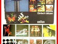 BRAUN Blitz Buch - Einfach blitzen - 64 Seiten - BRAUN - Nürnberg