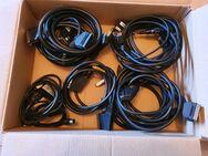 Scartkabel; 12 Kabel mit unterschiedlicher Polung und Länge - Zülpich