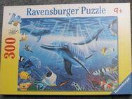 "Delfin 300 Puzzle Ravensburger ""Delfinwelt"" - Krefeld"