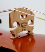 the violin project