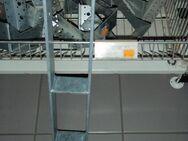 H - Pfostenträger 71 mm - Ulmen Ulmen