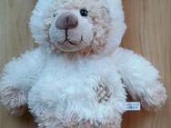 hellbrauner Teddy mit Osterhasenmütze. - Königswinter Zentrum