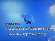 ❤️ ❤️ ❤️ Samsung Karaoke Player DVD-K110 russische Songs 4000 - Ingolstadt
