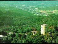 Ansichtskarte, alt, Burgruine Ginsburg - Niederfischbach