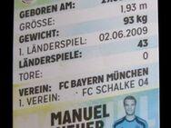Manuel Neuer - Offizielle DFB Sammelkarte (Rewe 2014) - Niddatal Zentrum