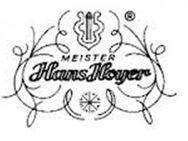 Hans Hoyer Bb - Waldhorn, rechtsgriffig, Goldmessing NEUWARE - Hagenburg