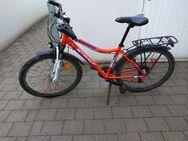 MTB Jugendrad - Rosenheim