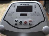 Profi-Crosstrainer EEC 3000 Proteus - Bad Belzig