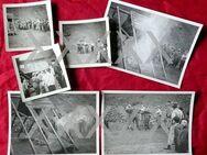 Konvolut von 6 alten Fotos vom 10.02.1937  - Ida-Oberstein - Niederfischbach