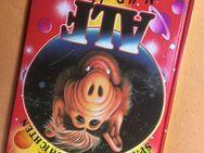 Die lustigen Alf Kinderbücher -neuwertig- - Bremen