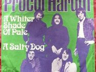 Vinyl Single - Procol Harum - Niederfischbach