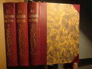 Der Kaufmann von heute in 3 Bänden (Ausgabe 1925, antiquarisch) - Wedel Zentrum