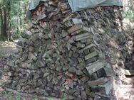 Brennholz: trockenes Brennholz, Ofenholz gemischt mit 25cm Länge, Haufen mit 12,544 Raummeter - Bad Belzig