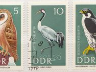 DDR-Briefmarken Tiere (2)  [384] - Hamburg