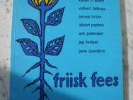 friisk fees- en antologii Nordfriesland Literarisch Buch Friesisch 7,- - Flensburg