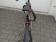 MTB, Mountenbike, Jugend (Herren) - Rosenheim