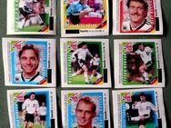 Konvolut von Hanuta Sammelbilder WM 1998 - Niederfischbach
