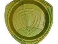 Pappteller 15 Stück, Ø21cm aus Laubblattern von Leaf - Rellingen