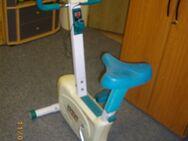 Ergometer, Stepper, Bauchmuskeltrainer, gebraucht zu verkaufen - Gera