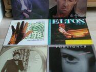 LPs Schallplatten Vinyl Pop Rock Alben+Sampler ca. 80 Stück - Flensburg