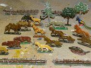 Zinnfiguren alt Zoofiguren für Setzkasten Sammler Museum 24tlg 1900 - Spraitbach