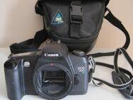 CANON EOS 500 und SIGMA-Objektiv, F3.5-5.6 - Erlensee