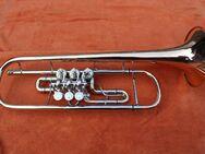 B Konzerttrompete von A.E. Fischer aus Bremen - Mechernich
