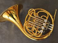 Meister Hans Hoyer 801 GL Doppelhorn mit Wasserklappe. Goldlack. Neuware