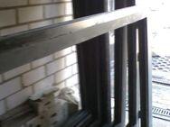 Fenster-Rahmen in hochwertiger Alu-Thermo-Kammer-Ausführung, - Simbach (Inn)