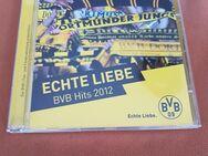 BVB Hits 2012    Echte Liebe - Kassel Brasselsberg