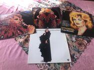 4 -Vinylplattensammlung von Evelyn Künneke - Plaidt