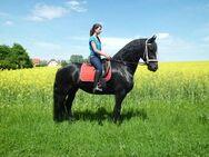 Ständig Pferde und neue Kutschen! - Buttstädt Zentrum
