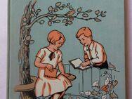 Frida Schanz. Der Buntspecht. Ein fröhliches Buch für Jungen und Mädchen, Jugendbuch von 1932 - Königsbach-Stein