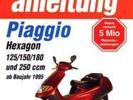 Reparaturanleitung Piaggio Hexagon von 125 - 250 cm³ - Bochum Goldhamme
